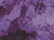 Grape 543-2A