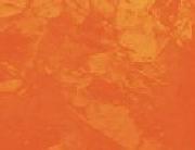 Light Orange 171A