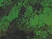 Emerald 125A